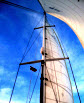 "Three Steps to ""Power Up"" Your Mainsail"